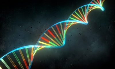 ADN sintético para conseguir una humanidad perfecta 65