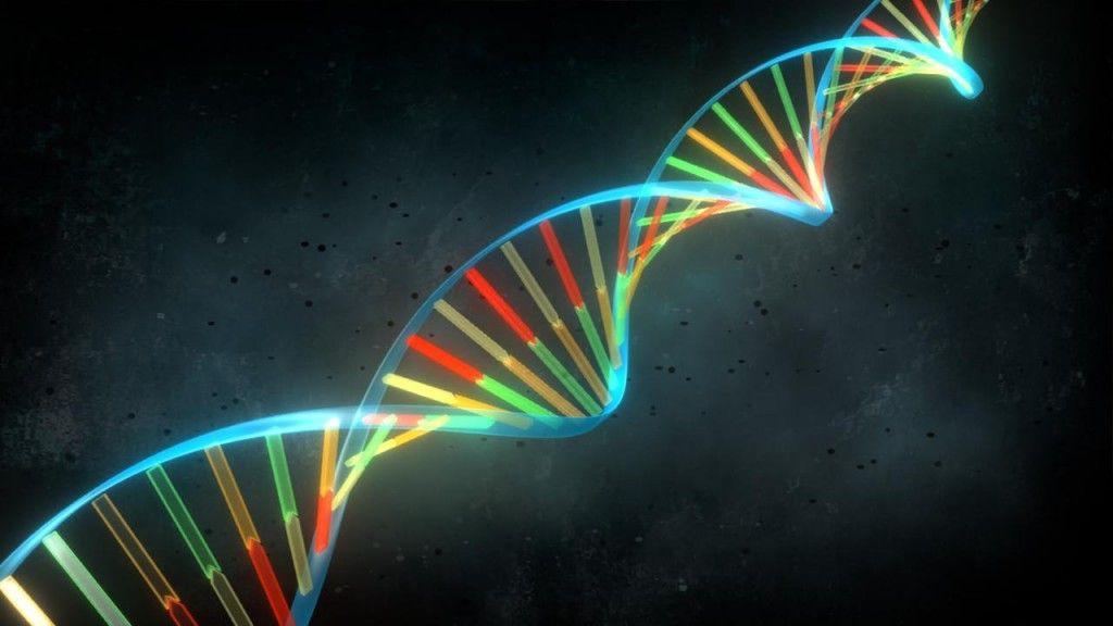 ADN sintético para conseguir una humanidad perfecta 29