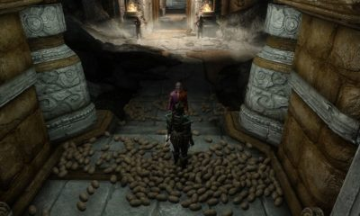Jugar a Skyrim con patatas es posible, aunque difícil 61