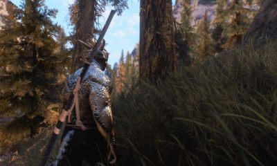 ¿Veremos una versión remasterizada de Skyrim en el E3? 56