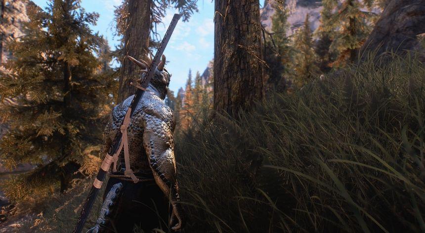 ¿Veremos una versión remasterizada de Skyrim en el E3? 29