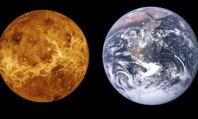 Venus habría tenido agua y vida antes que la Tierra 84