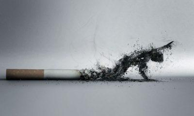 El tabaco activa cientos de mutaciones de ADN cada año 61