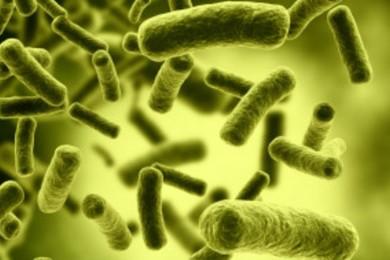 Registrado un nuevo caso de superbacterias y antibióticos que fallan