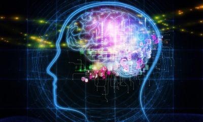 DeepMind utiliza juegos para probar la agresividad y cooperación de la IA 82