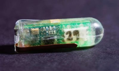 Crean sensor que se alimenta de los ácidos del estómago 29