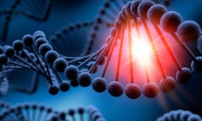 Logran almacenar 215 PB de datos en ADN, y los recuperan sin errores 49
