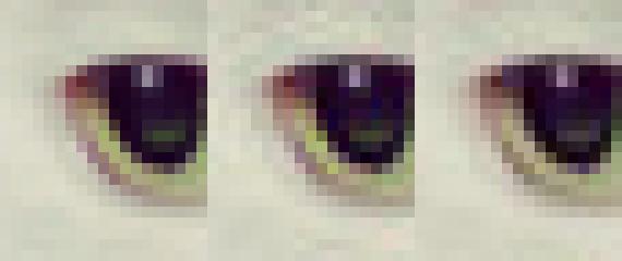 tamaño de los JPEG