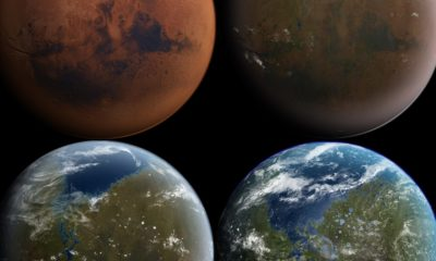 """¿Hubo árboles en Marte? Eso dice un conocido """"cazador de aliens"""" 109"""