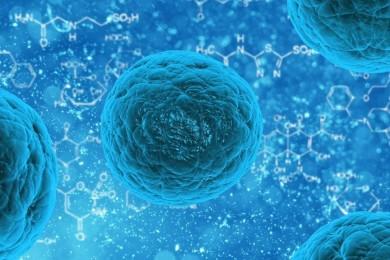Células madre reprogramadas, un avance muy importante