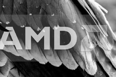 Avistada APU Raven Ridge con GPU basada en Vega de AMD