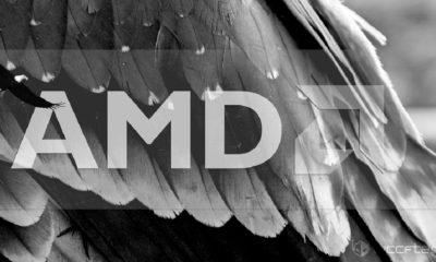 Avistada APU Raven Ridge con GPU basada en Vega de AMD 144