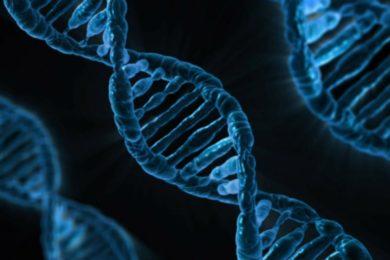 Almacenan una película en el ADN de bacterias vivas
