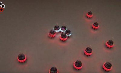 Científicos crean robots capaces de colaborar entre ellos 95
