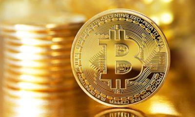 Sigue la locura, Bitcoin supera los 9.000 dólares 76