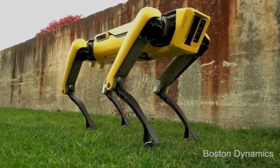 "Conoce a SpotMini, el nuevo ""perro"" robot de Boston Dynamics 65"