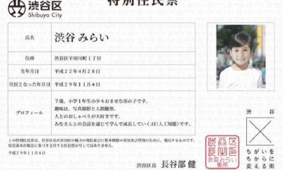 Japón da la residencia a un chat bot de 7 años 42