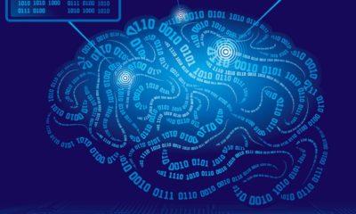 Los implantes cerebrales podrían mejorar un 30% la memoria 53