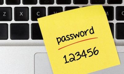 Descubren una base de datos con 1.400 millones de contraseñas en texto plano 33
