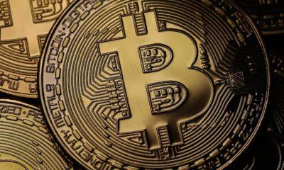 Nuestros lectores hablan: ¿Aceptarías cobrar tu salario o parte de él en Bitcoins? 50