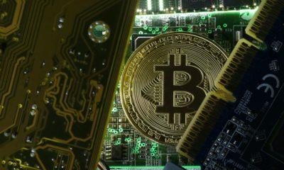 La caída de Bitcoin es preocupante; estuvo a punto de bajar de los 6.000 dólares 98