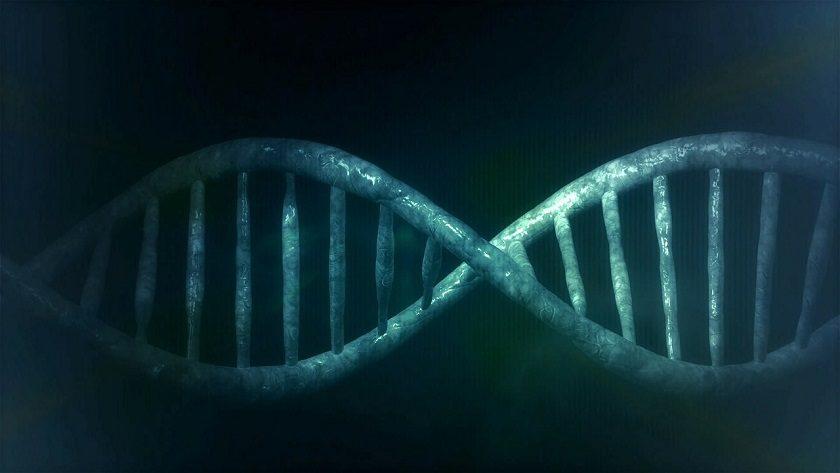 ¿Qué tecnología es capaz de analizar el ADN humano?