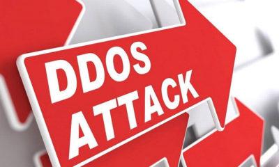 La policía cierra el mayor marketplace de ataques DDoS del mundo 31