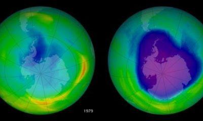 Un CFC que fue prohibido sigue en uso y está dañando la capa de ozono 59