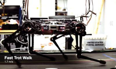 """Cheetah 3: el robot """"ciego"""" del MIT que sube escaleras y sortea obstáculos"""