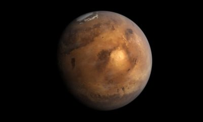 La NASA podría haber destruido por error pruebas de vida en Marte 77