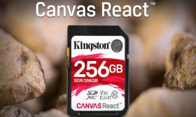 microSD Canvas React