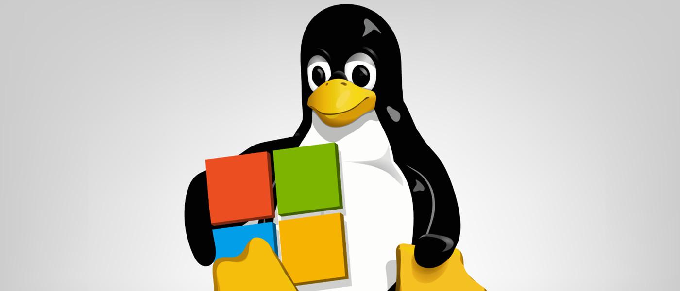Escritorio Linux de Microsoft