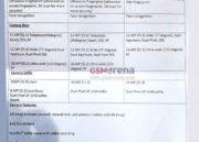 Especificaciones completas de los Galaxy S10 en todas sus versiones 42