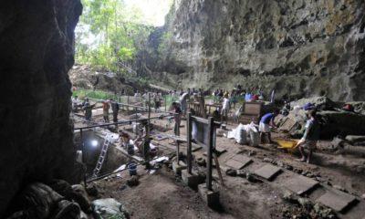 Descubren al 'Homo luzonesis', una nueva especie de humanos coetánea al 'Homo sapiens' 30