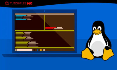 Windows Subsystem for Linux 2