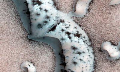 La exploración espacial propone un Marte terraformado por zonas 54