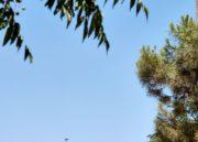 Oppo Reno 10X Zoom, análisis: Y verás 50