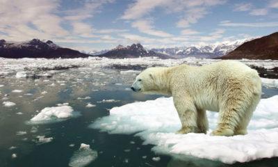Cumbre del Clima de la ONU