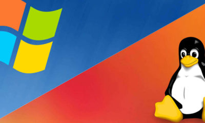 Linux por Windows