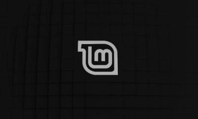 Linux Mint 19.3, novedades y descarga 96