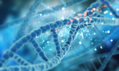 Autorizado en España el primer proyecto de modificación genética en embriones 35