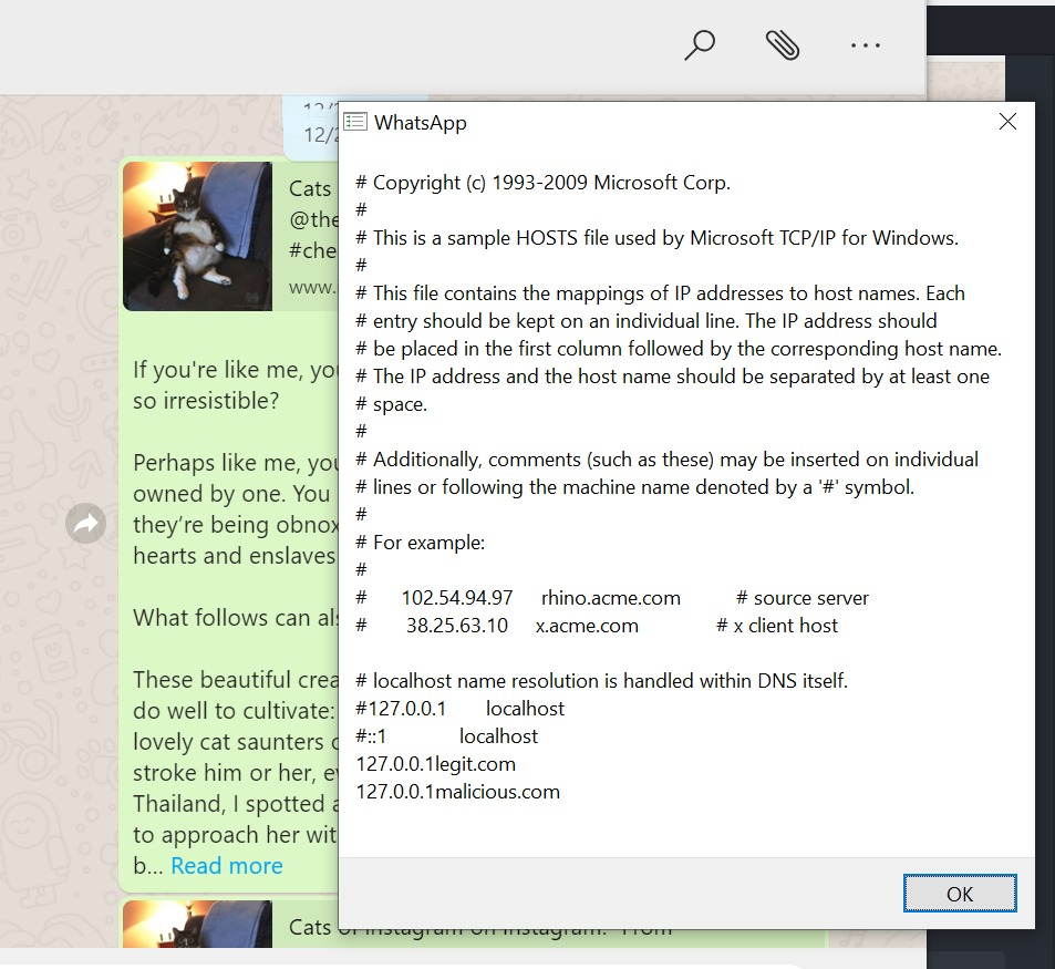 Un fallo del WhatsApp de escritorio permitió hackear computadoras con un simple mensaje 33