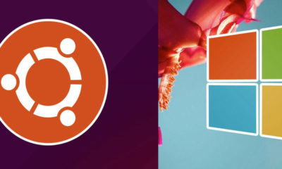 reemplazar Windows por Linux