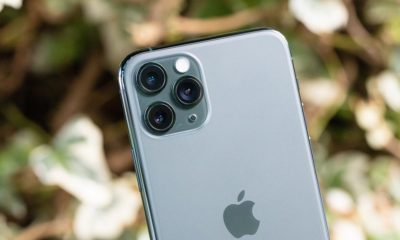 ¿iPhone 11 con pantalla un poco verde? Seguro que has actualizado a iOS 13.5