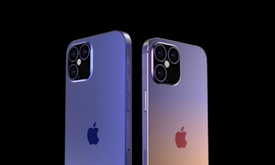 iPhone 12 Diseño Tamaño Modelos