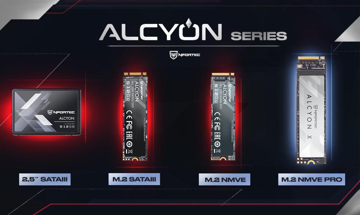 """Nfortec Alcyon 2,5/"""" SSD Disco Duro S/ólido Interno con un Interfaz SATA III de 6.0 Gbps 256 GB"""