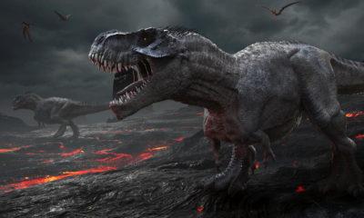extinción de los dinosaurios