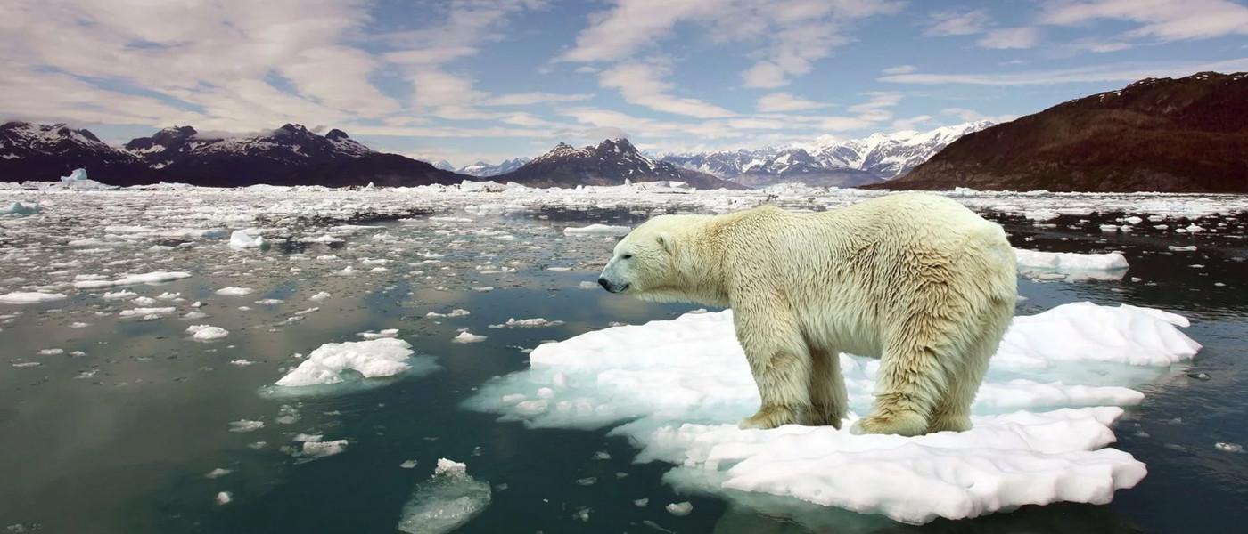 El dióxido de carbono en la atmósfera alcanza el nivel más alto de la historia humana 32