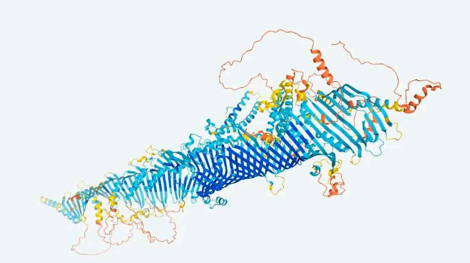 Proteínas humanas: su mapa ya está muy cerca