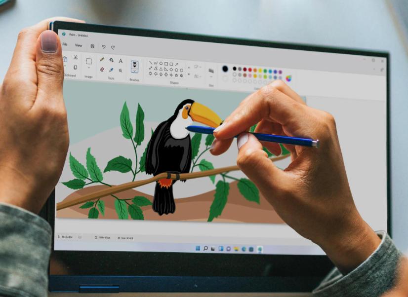 Paint de Windows 11